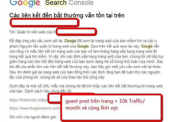 Kể cả những trang web lớn vẫn có khả năng bị phạt do backlink hoặc guest post